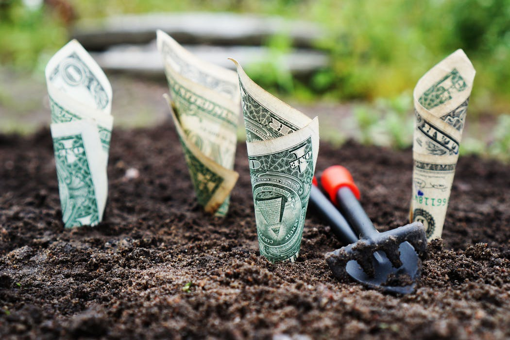 Americans are spending more on gardening today than ever before.