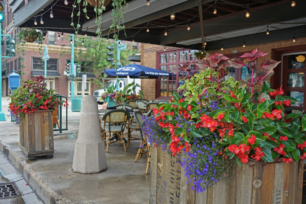 container-plants-outdoor-seating