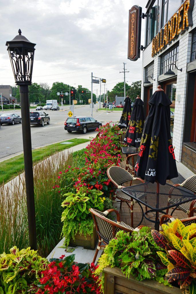 colorful-plants-along-sidewalk